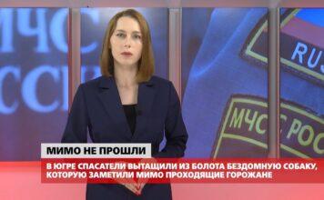 Ноябрьск. Происшествия от 15.10.2021 с Наталией Кузнецовой